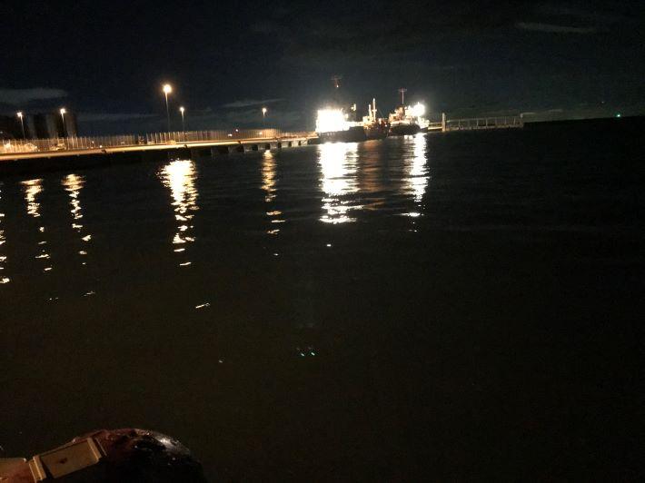 松阪港の夜釣り